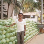 Watermelon stand in front of our house - Bangalore
